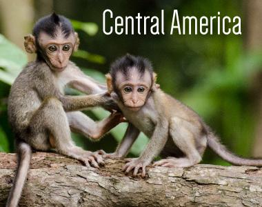 TTS--Central-America-Button